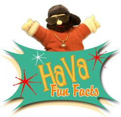 Fun Hava Facts